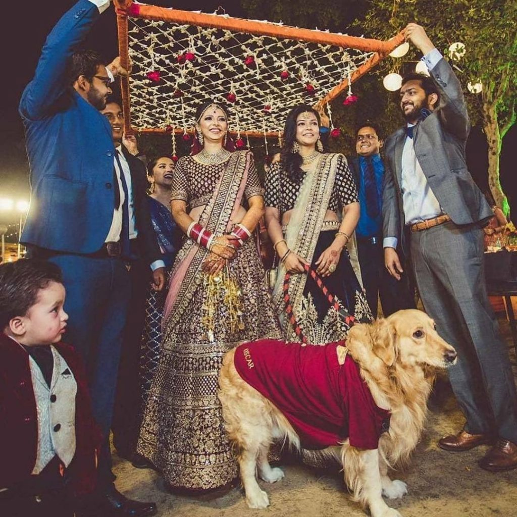 bridal entry idea with floral chaadar and pet