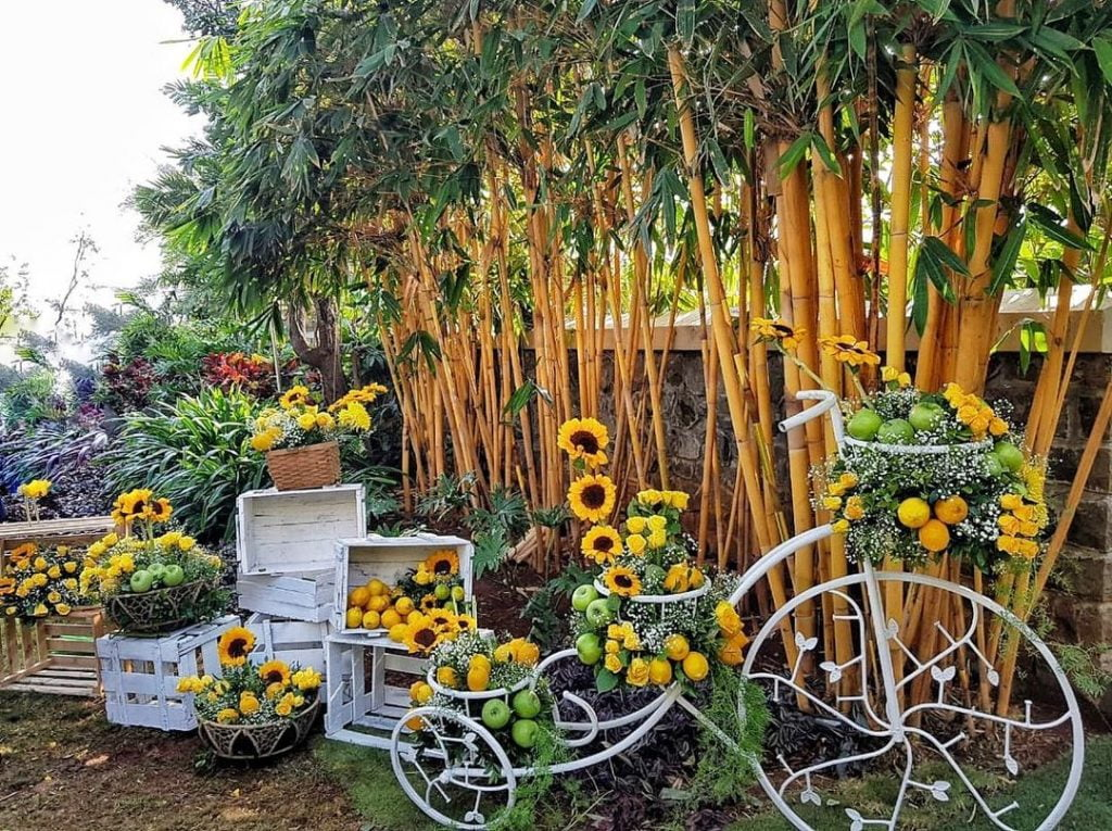 cycle decoration with sunflowers and fruits